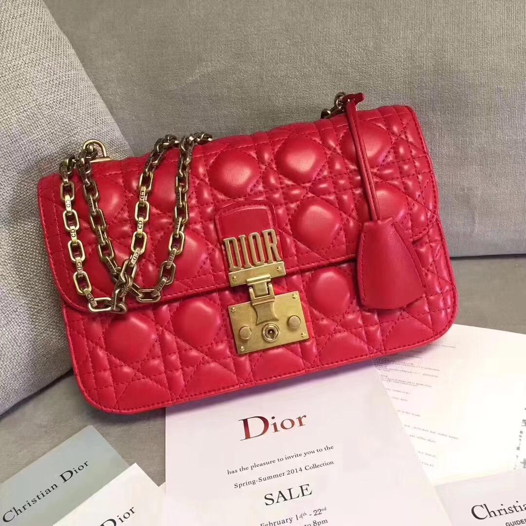 Dior クリスチャンディオール レディース 3色 ショルダーバッグ 最新入荷 代引き届く